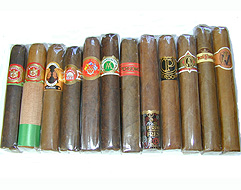 Handcrafted Robusto Sampler -  12 Superb Robustos