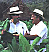carlos and carlito fuente portrait image