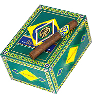 CAO Brazilia Amazon - 5 pack image