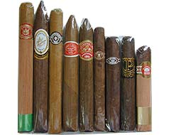 Handcrafted Premium Sampler - 9 Great cigars, various sizes