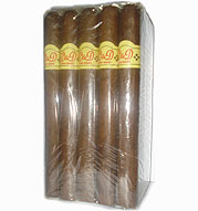 WD Honduran Presidente Bundle - 25 cigars