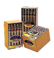Cusano Killer Cameroon Corona  - Box of 20