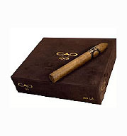 CAO CX2 Robusto - Box of 20