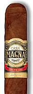Casa Magna Robusto - 5 Pack - Rated 95!