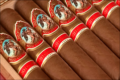 God of Fire by Don Carlos Robusto -5 Pack
