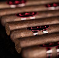 CAO Consigliere Soldier, Toro - 5 Pack